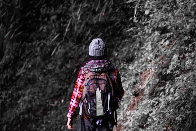 山菜採りに最適な服装(キノコ狩り)おすすめのウェア・靴・道具の紹介