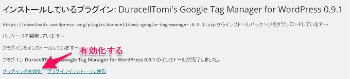 google_tag_manager_for_wordpress_install_2